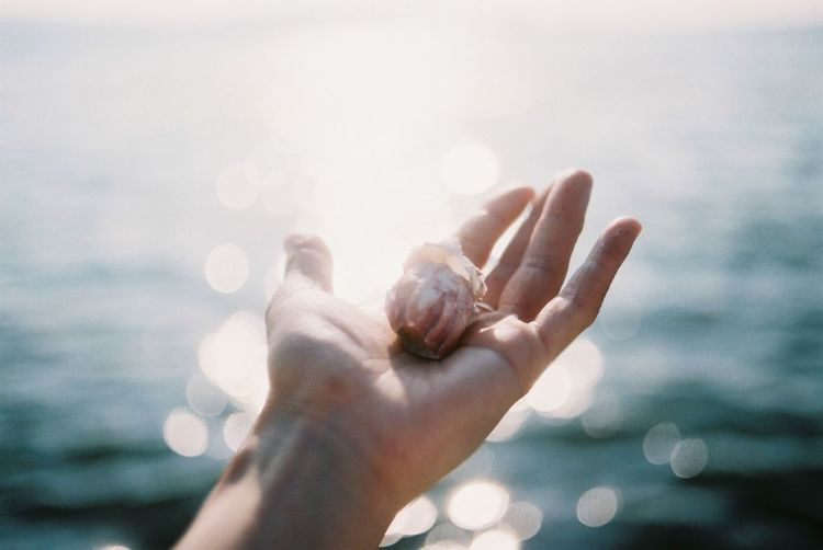 Close-up of hand holding sea against sky