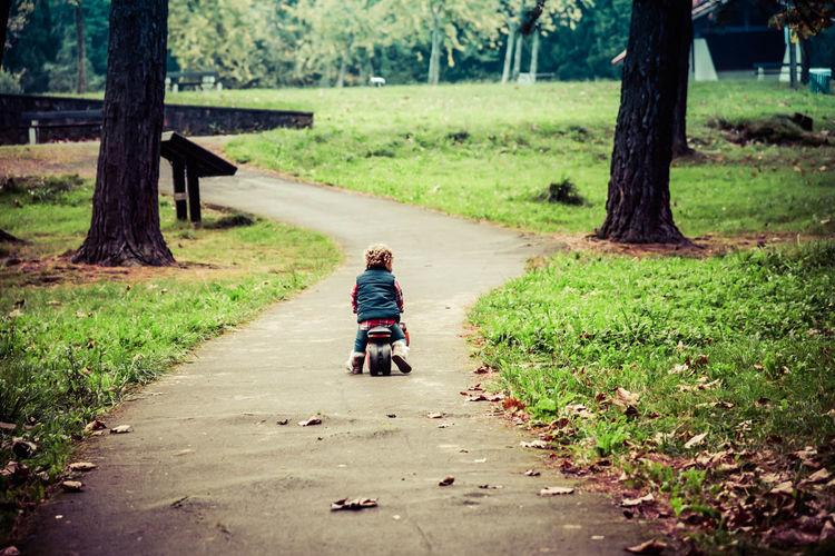 Rear view of boy walking on grass
