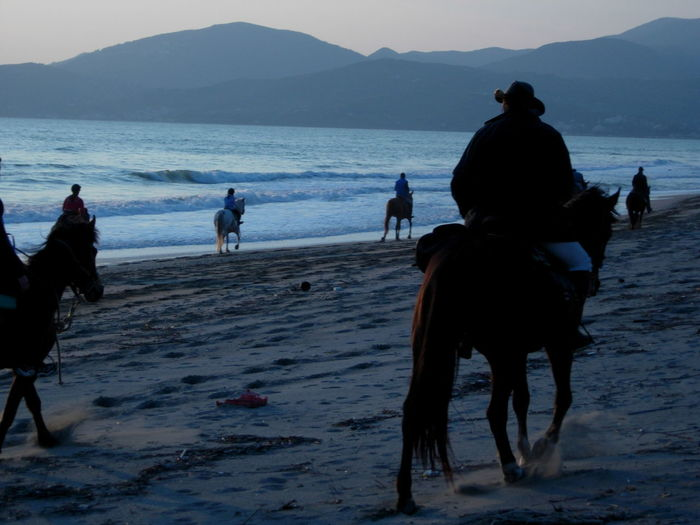 Old Friends Of Mine Horse Horseback Riding Riding Domestic Animals Animal Themes Animal Running Sand Sea Silhouette Beach Group Of Animals Mammal One Animal Mountain People Full Length Adult Outdoors Dog