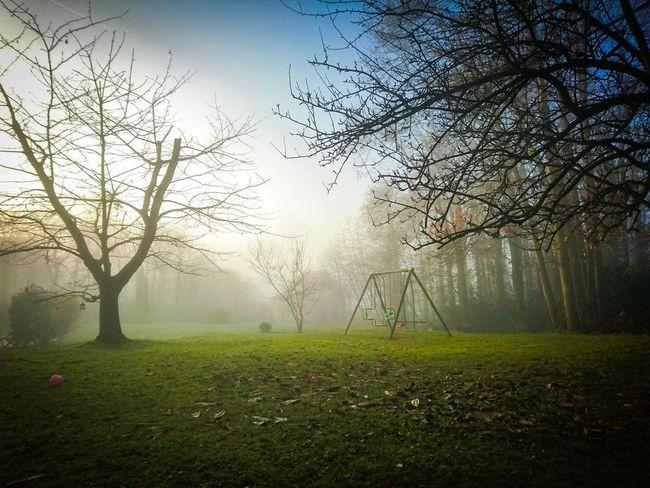 Fog ! 👻