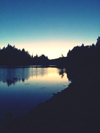 Those summer time nature walks???☀️ Nature Walk ♥