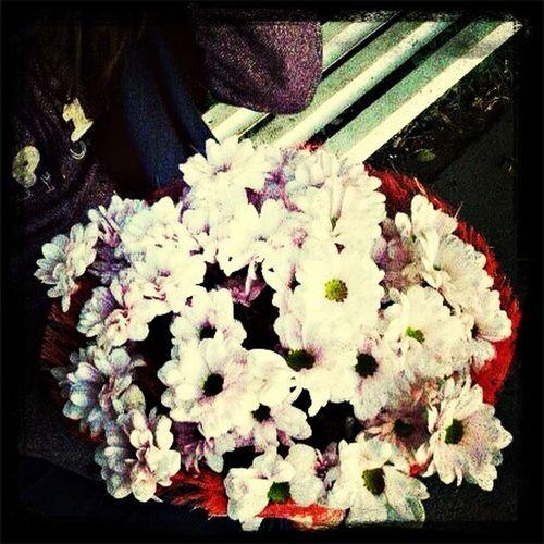 Цветочки^^