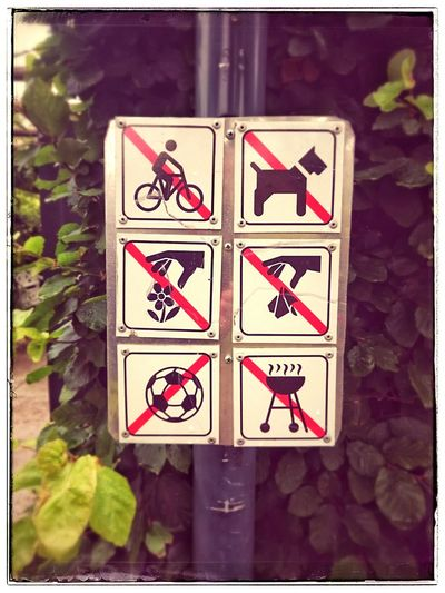 Nodogsallowed Nolittering Nocycling Nofun Streetsign Parksigns Parks And Recreation