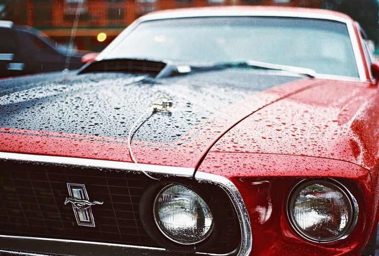Fastback by