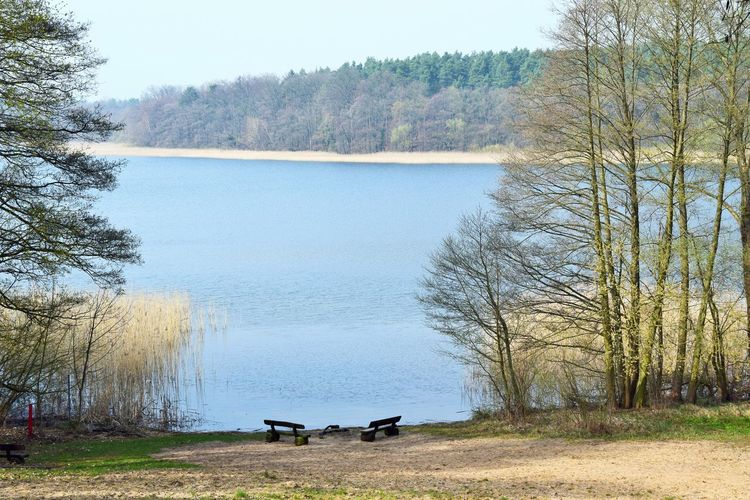 Am Wutzsee. Warten auf den Sommer... Tree Plant Tranquility Seat Nature Tranquil Scene Bench Beauty In Nature Water Scenics - Nature Lake Day No People Absence Land Outdoors Grass Idyllic Empty Park Bench Lakeshore Light And Shadow