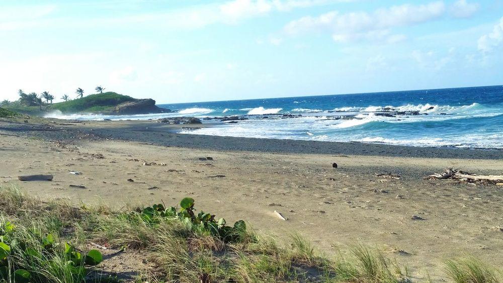 Puerto Rico Paradise Beach Arecibo