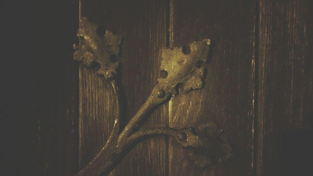 Ornamental Old Hinges Hinges Church Door