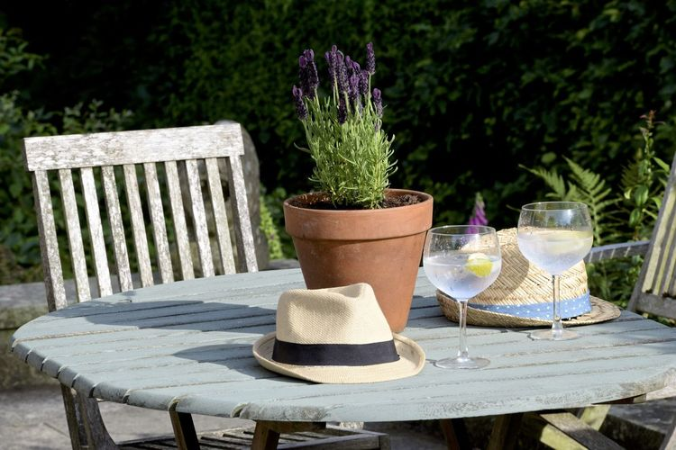 July Patio Chair Close-up Day Food And Drink Freshness Ginandtonics Glass Lavender Nature No People Outdoors Plant Potted Plant Seat Setting Straw Hat Summer Table Uk