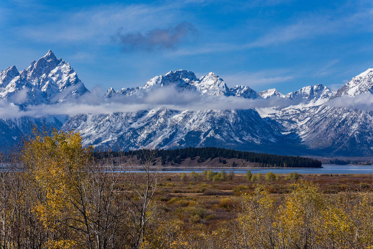 EyeEmNewHere Grand Teton National Park  Beauty In Nature Blue Cold Temperature Day Lake Landscape Mountain Mountain Range Nature No People Outdoors Scenics Sky Snow Snowcapped Mountain Tranquil Scene Tranquility Tree Water Wilderness Area Winter