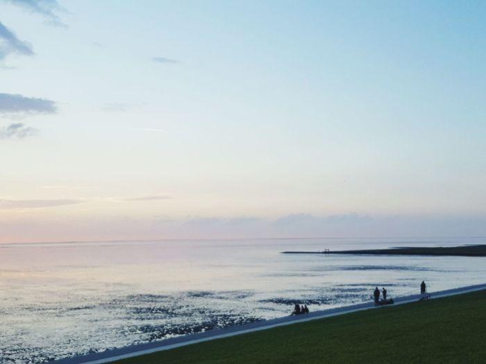 Dämmerung Nordsee Ebbe Deich