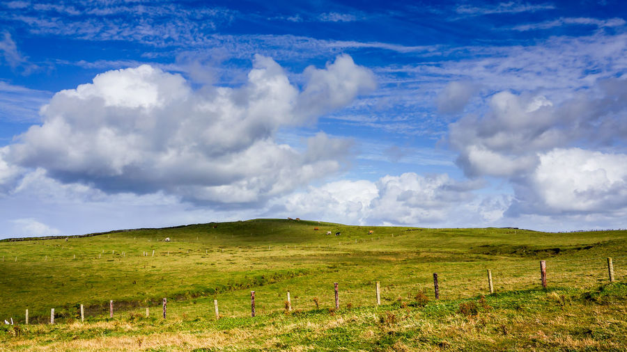Blue sky and green field Beauty In Nature Cloud - Sky Day Farming Field Grass Ireland Landscape Nature No People Outdoors Rural Scene Scenics Sky Tranquil Scene Tranquility
