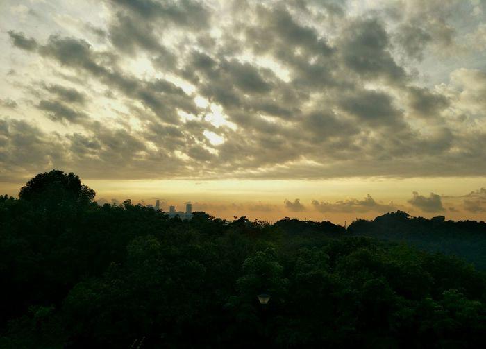 Sunrise at terrance garden