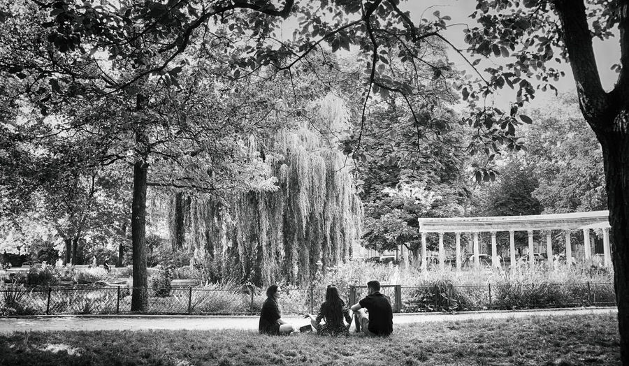 Tree Plant Nature Sitting Group Of People Tree Trunk Architecture Togetherness Blackandwhite Black And White Black & White Paris Park City Life Urbanphotography EyeEm Selects