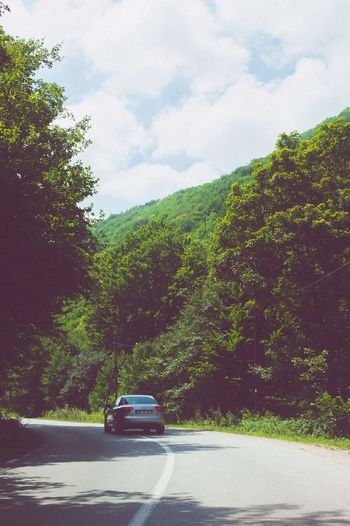 Traveling Audi A4 Romania Nature Road Roadtrip Trees Trees And Sky On The Road Hello World