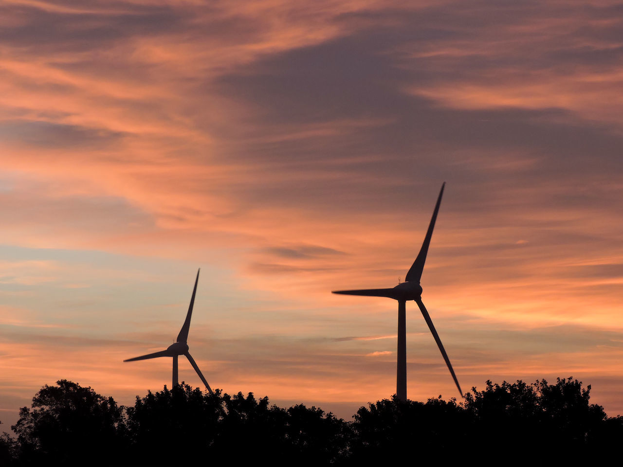 sunset, sky, cloud - sky, renewable energy, alternative energy, wind turbine, turbine, fuel and power generation, environmental conservation, wind power, silhouette, orange color, environment, nature, tree, plant, technology, beauty in nature, scenics - nature, no people, outdoors, sustainable resources