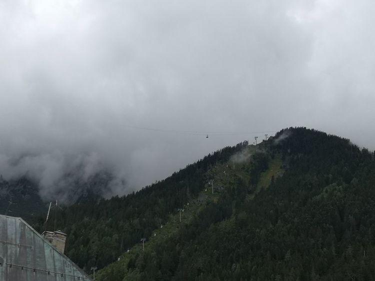 Tree Mountain Forest Pinaceae Storm Cloud Sky Cloud - Sky