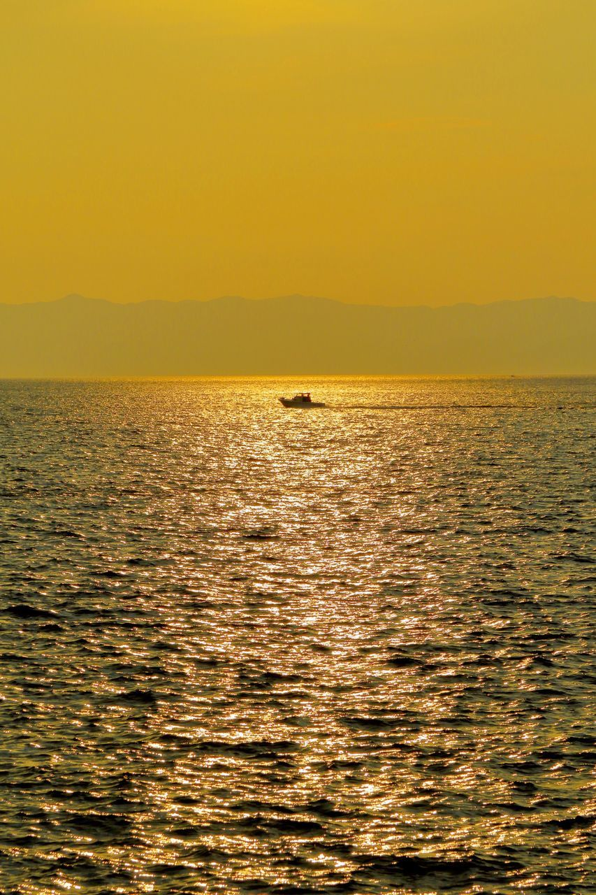 water, sky, sunset, sea, waterfront, scenics - nature, beauty in nature, horizon over water, horizon, orange color, tranquil scene, silhouette, tranquility, nature, no people, idyllic, vertebrate, one animal, animal themes, outdoors