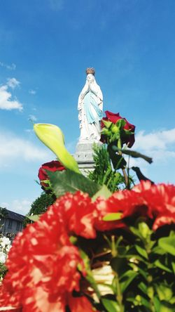 Red Flower Outdoors Sky Adult People Day Adults Only One Person Freshness Low Angle View Nature Lourdes One Man Only Christianity France Mother Mary Neighborhood Map ImmaculateConception