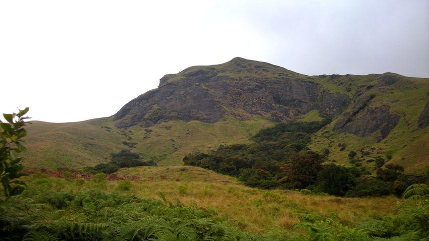 Mountain Landscape Outdoors Scenics Nature Beauty In Nature Munnar Kerala Kerala, India