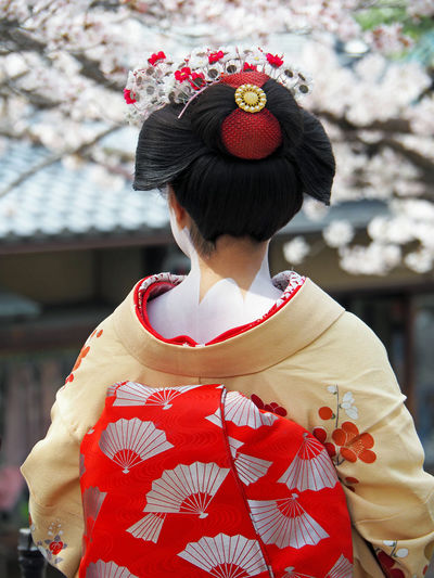 Cherry Blossom Cherry Blossoms Cherry Tree Cherryblossom Clothing Geisha Japan Japan Scenery Japanese  Japanese Culture Japanese Style Kimono KimonoStyle Sakura Tradition Traditional Traditional Clothing Traditional Culture Ultimate Japan