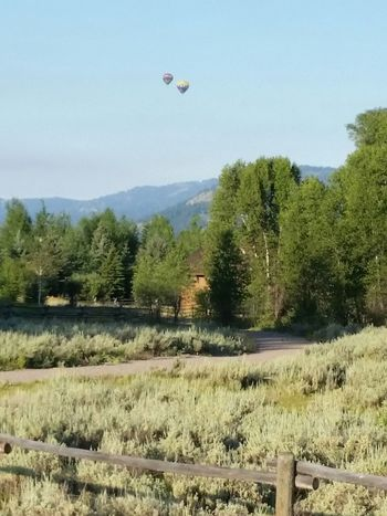 Hot Air Ballons Wyoming Tetons Ranch Life Sunrise Ballons At Dawn
