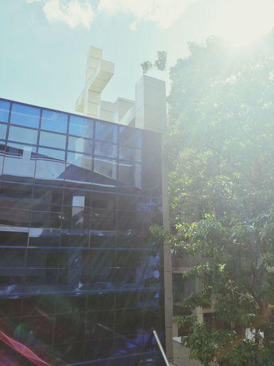 I'm not catholic but I like how the sun meets the glass building Cloud - Sky Glass Building Crucifix Sun Light sunset sun clouds skylovers sky nature beautifulinnature naturalbeauty photography landscape