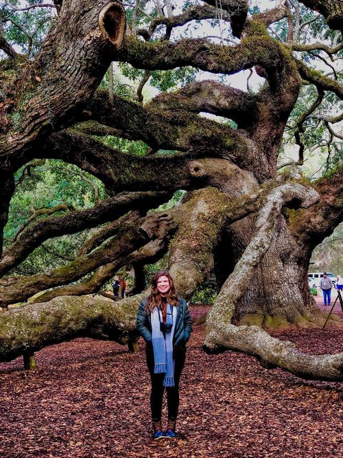 Tree goals. Front View One Person Real People Looking At Camera Portrait Standing Casual Clothing Tree Outdoors Day Young Adult Full Length Nature