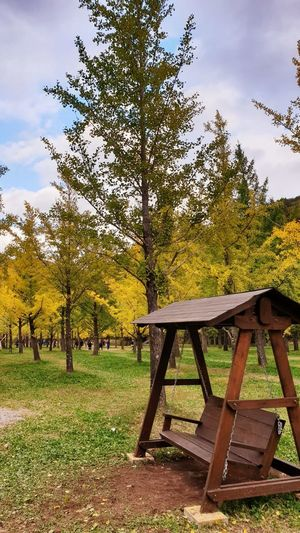 Park bench by trees on field during autumn