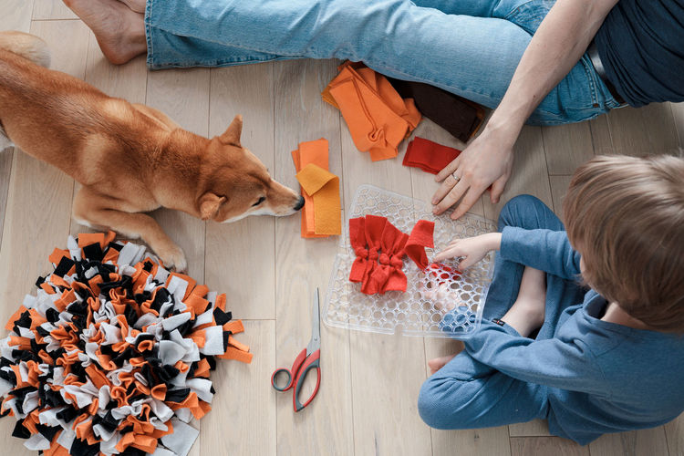 High angle view of people and cat on floor