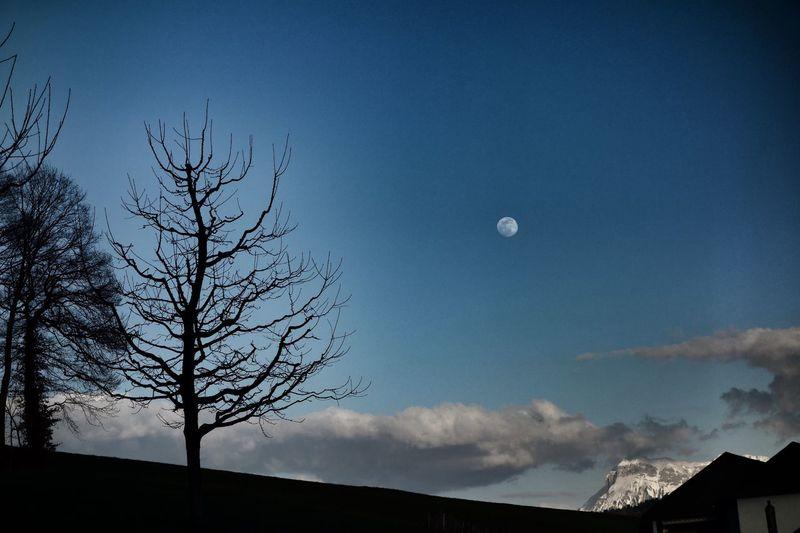 Sky Moon Beauty