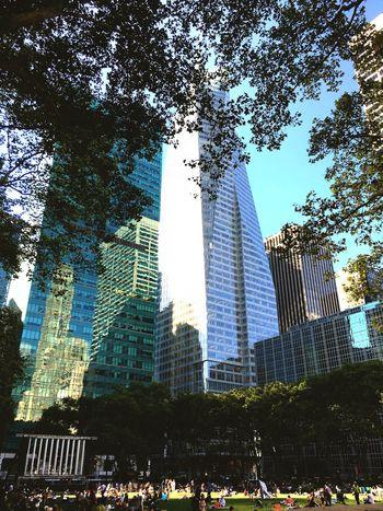 NYC Bryantpark Contrast