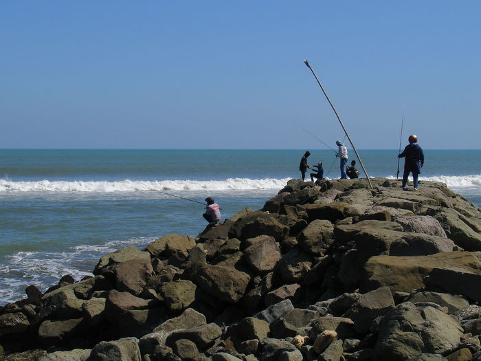 People fishing on beach against clear sky