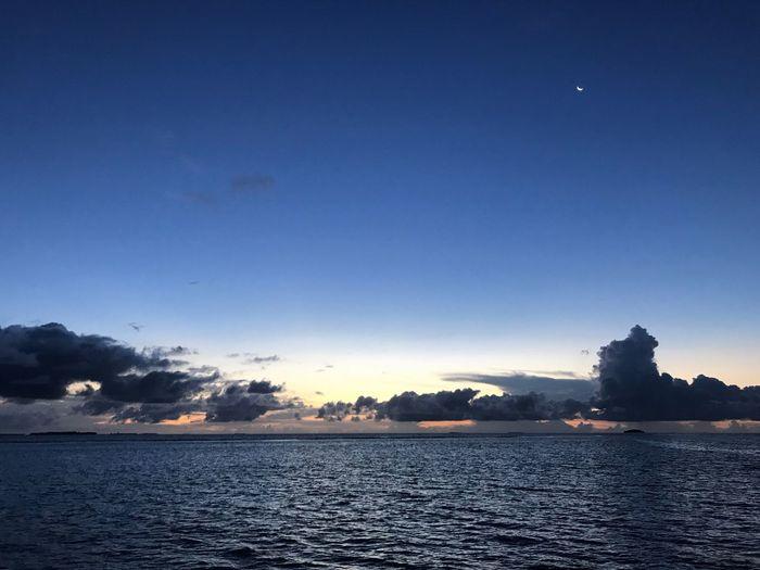 Sea Life Clouds And Sky Sunrise Moon Sky Blue Sky