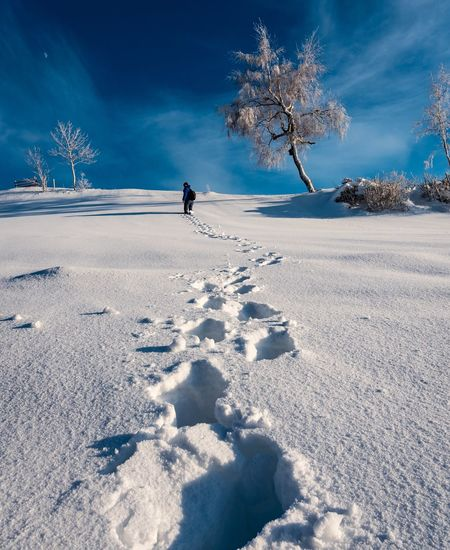 Person walking snow covered land