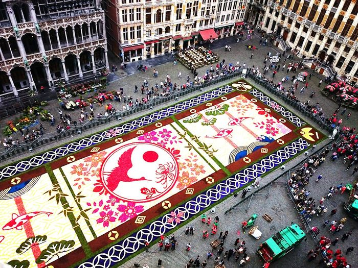 Brussels Flower Carpet 2016 Flower Carpet Brussels Grand Place Bruxelles From My Point Of View From Above  Japan Looking Down Check This Out Street Photography Mobile Photography Eyeem Flower Lover Battle Of The Cities Flying High