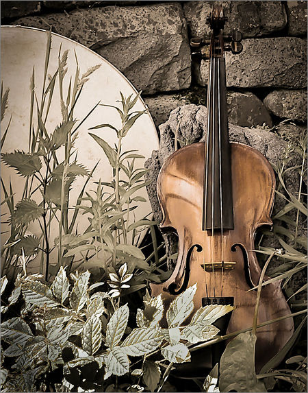 Arts Culture And Entertainment Backgrounds Bodhran Desaturated Fiddle Guitar Music Musical Instrument Musical Instrument String No People Violin Violin, Bridge, Strings, Music, Wooden, Instrument, Classical Music,