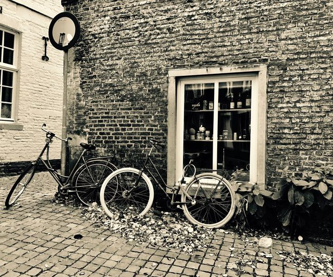 Bicycles against brick wall