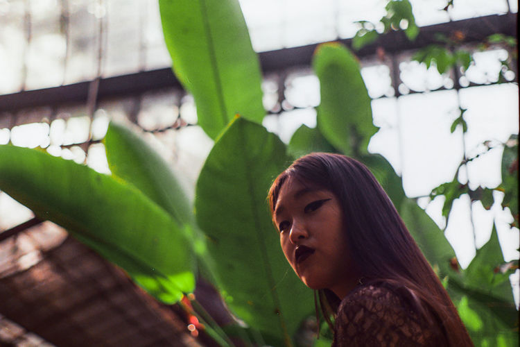 Low angle view of young woman looking away while standing against plants