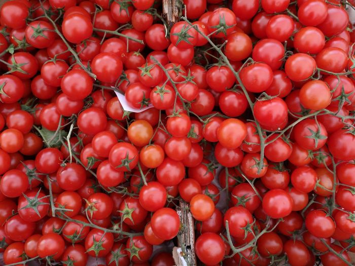 Red Full Frame Backgrounds Fruit Tomato Close-up Food And Drink Farmer Market Farmer's Market Homegrown Produce