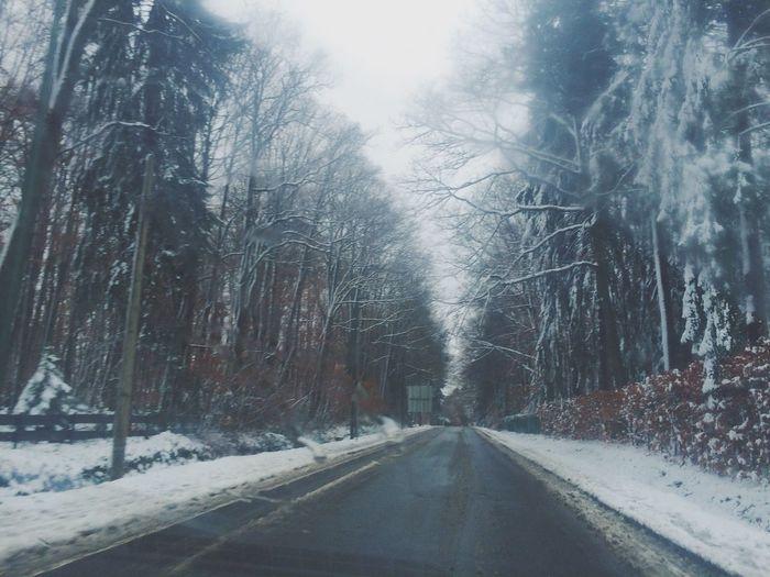Nature Spa Snow Eyem Best Shots