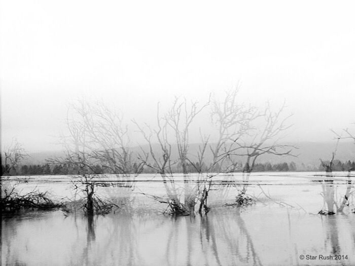 Melancholic Landscapes Black & White