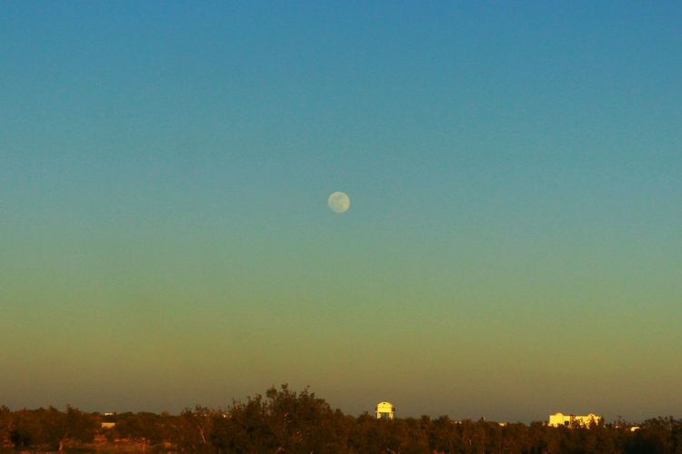 Moon in the afternoon Djerba  Brizigou Asi Photography Moon Dusk Nature Hot Air Balloon Sky Tree Scenics Outdoors Tranquility No People Landscape Astronomy Beauty In Nature