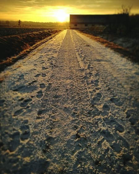 Winter morning Nature The Way Forward Yellow Sunlight Outdoors No People Landscape Day Beauty In Nature Turopolje Croatia Frozen Nature Road Sunrise Morning Light Morning Countryside Winter