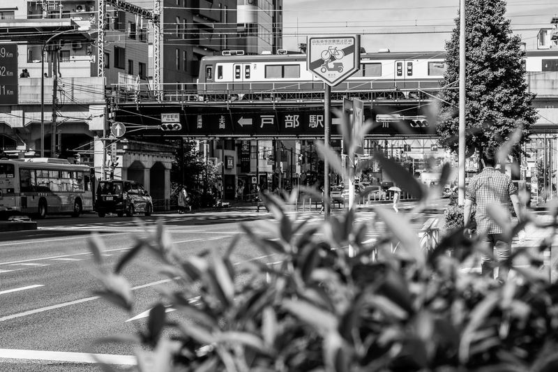 Morning Light Bwphotography Monochrome Roadside Green City Street Yokohama Yokohama, Japan Built Structure City Building Exterior Transportation Street Nature Mode Of Transportation City Life Focus On Background