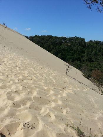 Dune Dune Du Pyla Sable Plage Sand Dune Vacations Nature Adventure Travel Destinations Sand Desert Beach