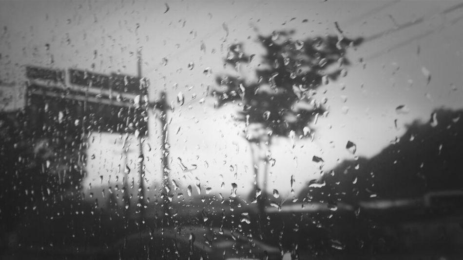 비오는 날.출근길.