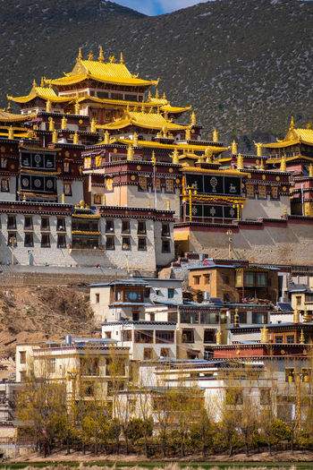 Building Exterior Architecture Built Structure Building City Residential District No People Religion Nature Belief Day High Angle View Outdoors Travel Destinations Place Of Worship Spirituality Cityscape Temple Shangrila Shangri-La Yunnan China Tibet Mountain