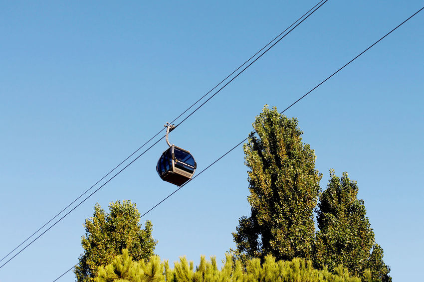 Blue Sky Cable Cableway Day Low Angle View Mode Of Transport Portugal Transportation Tree Trees And Sky