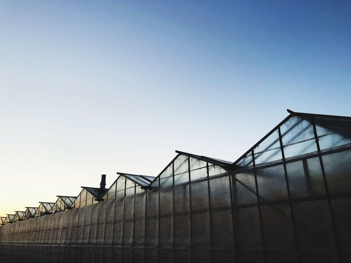 Agriculture. Pattern, Texture, Shape And Form Pattern Sky Copy Space Fence Barrier Boundary Clear Sky Nature Low Angle View Outdoors No People Built Structure Day 17.62°