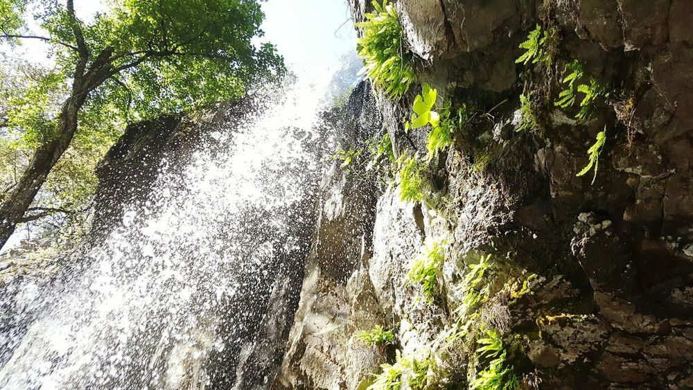 Our Adventure ends at the Waterfalls Waterdrops Plants Rockwall Live For The Story